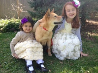 Easter. We JUST adopted this 9-year-old Korean Jindo from a rescue and named her Hope!